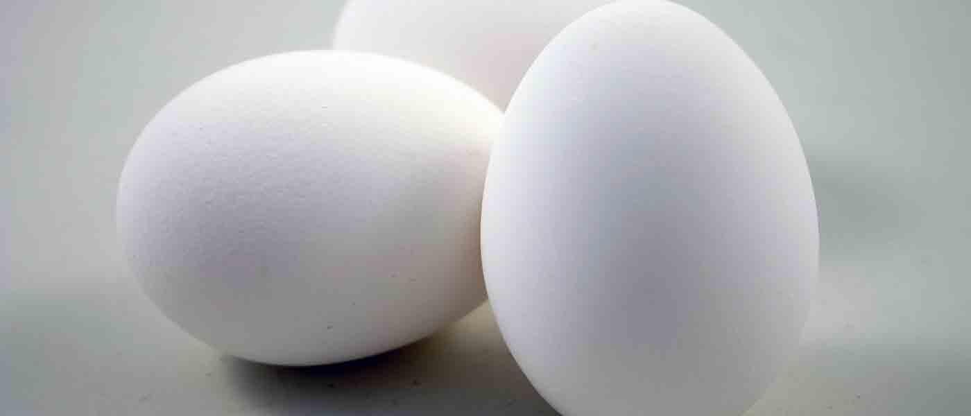Pentingnya Makan Telur untuk Pelari